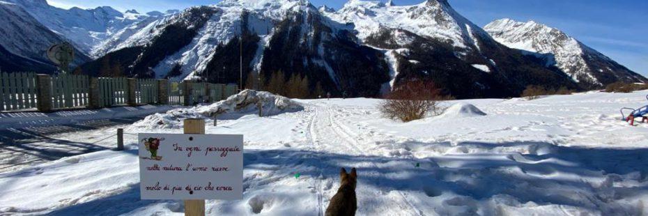 Inchino alla montagna - Ciaspole Cogne Belvedere